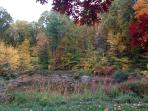 Fall, our private pond