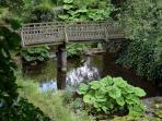 Wooden Bridge (in garden)