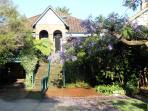 Jacaranda magic.  House overlooks Ivanhoe Botanic Gardens