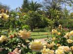Casa Ishi Villa Garden