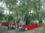 Aire de jeux sur arrière propriété avec bac à sable, balançoires et jeux roulants...