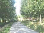 Camino de la vega