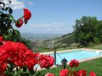 The Pool is located in the most panoramic area of the garden, overlooking the valley and sunset