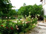 The entrance garden