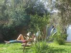 farniente dans les oliviers du jardin