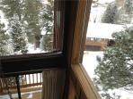 Deck, Porch, Fir, Tree, Building