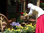 Détendez-vous ou prenez une pause sur notre terrasse au Jardin...