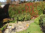 Our garden in autumn