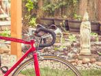Cabin overlooks veggie/herb garden. Rent 2 bikes to explore the most bike-friendly city in US