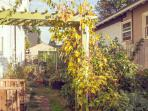 Well-lit garden path leads back to your quiet Eco-Cabin in the heart of Alberta Arts District.