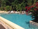Refreshing common pool