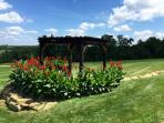10x10 Pergola Great for Weddings or photos