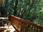 Guest Cottage deck over napa River