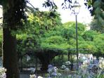 Principe Real garden - 7 min walk from the apartment
