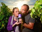Si vous le désirez nous pourrons vous faire découvrir le domaine et ses vins...