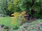Garden and river