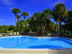 Heated Pool at Safety Harbor