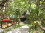 Beautiful green vegetation surrounds your beach front villa.