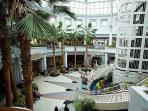 Go shopping at Towson Town Center