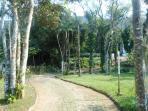 Ampla área verde de 5000M².
