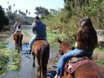 horseback riding nearby