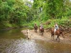 rent a horse and guide for an economical adventure