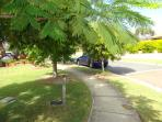 Ontario Crescent is a safe, wide street with well kept gardens and neighbours who are keen gardeners