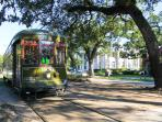 see beautiful and magnificent St. Charles homes from the Streetcar and enjoy the Southern treasures