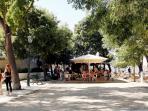 São Pedro de Alcântara garden - 100m to your left