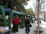 Weekly street market at Principe Real garden - 200m to your right