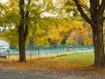 Tennis courts at Fleischmanns Park, just a short walk down Wagner Ave.