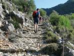 Walking in Pollensa area