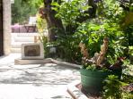 Villa Dlmatia