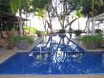 Langosta Beach Club Pool and Beach Access Included!