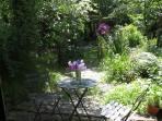 Cuddfan's garden