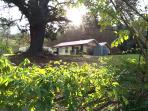 Charming Cottage  with large lounge dining area Tucked away in Upper Kangaroo River 5mins to town