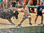 'Bous a la mar' Julio. Fiestas patronales de Dénia. Fiesta de Interés turístico internacional.
