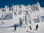 Revelstoke boasts the longest vertical descent in North America