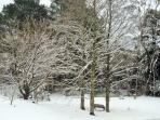 July snowfall