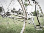 This vintage styled Fixie bike can be hired on site