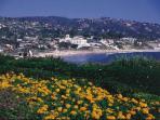 Image of Laguna Beach