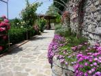 Take the rose arch path to arrive at the pool, which sits in the sun all day.