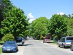 Our tree lined street with lots of free parking