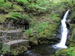 Dolgoch Falls, 2.5 miles from your cottage