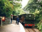Step on to the narrow gauge steam train at Dolgoch Falls (2.5 miles)