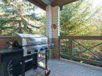 Private covered patio with new GRILL