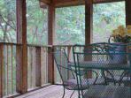 Screened-In Back Porch in the Woods