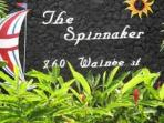 Welcome to the Spinnaker!