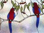 Rosellas in lead light, Lyrebird Cottages