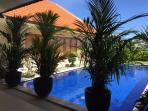 A 10 x 5 m pool located in the main villa is available to guests